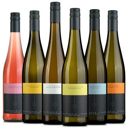 6 Flaschen Alexander Gysler Wein - Das Wein-Probierset 2019
