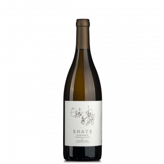 Enate Chardonnay DO Barrique 2011