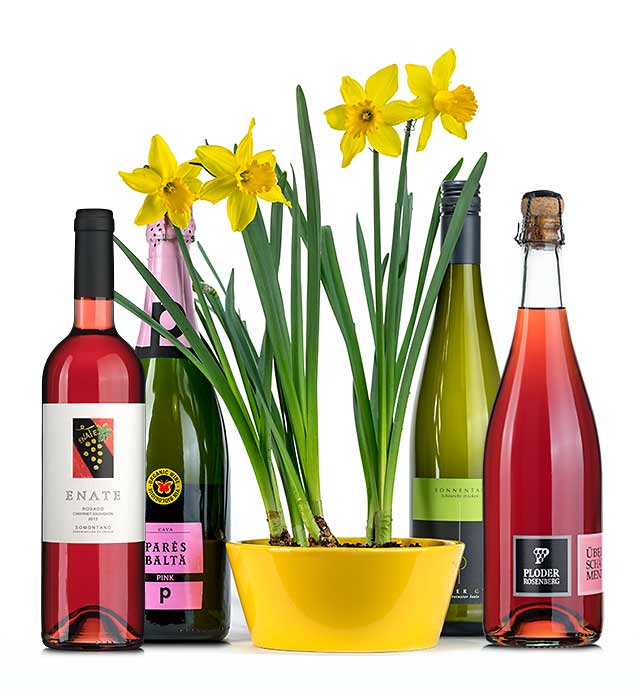 Frühlingsweine 2019 bei vinoakvo